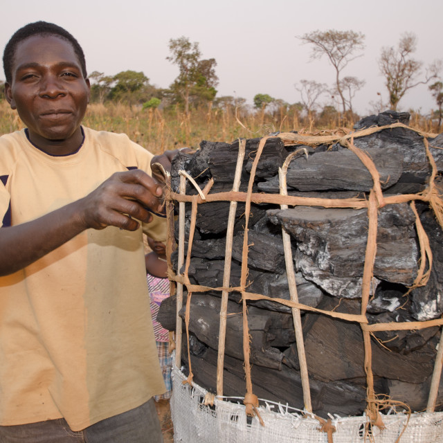 """""""Charcoal maker selling charcoal on the side of the road, Zambia, Africa"""" stock image"""