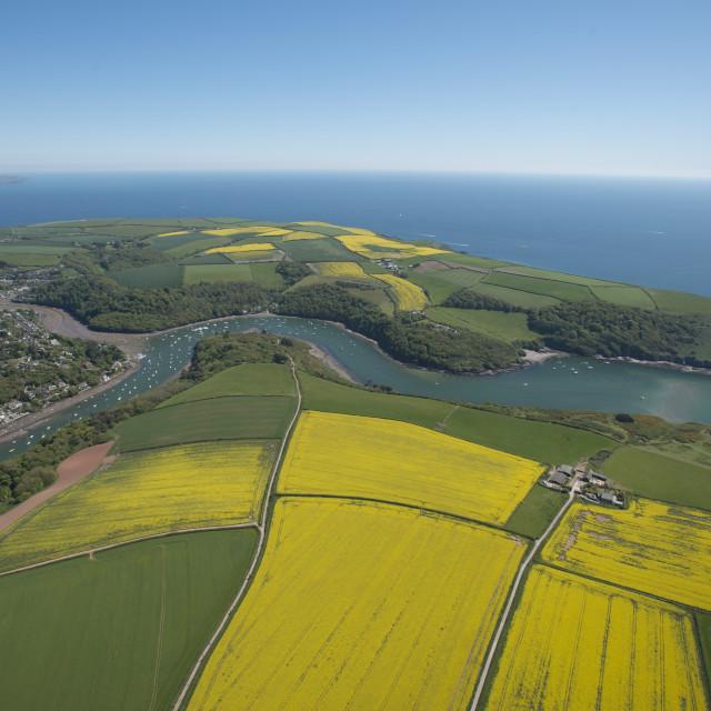 """Newton Ferries showing Newton Creeks. Devon. UK"" stock image"