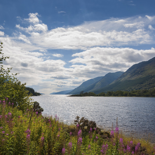 """View of the Loch Ness, in Scotland, United Kingdom"" stock image"