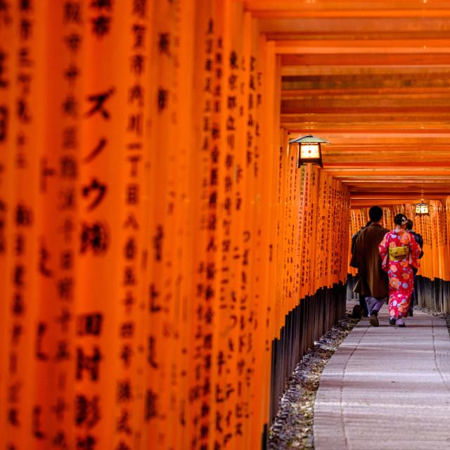 """""""Fushimi Inari-taisha temple, Shinto sanctuary, torii lined alleys, Kyoto,..."""" stock image"""