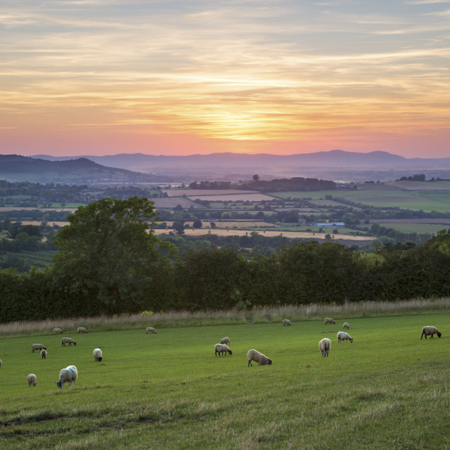 """Cotswold landscape and distant Malvern Hills at sunset, Farmcote, Cotswolds,..."" stock image"
