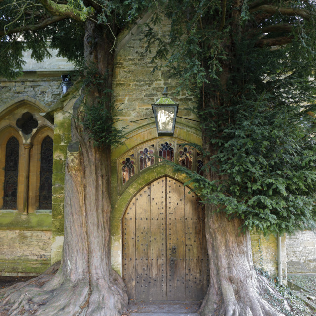 """Yew trees and door of St Edward's church, Stow-on-the-Wold, Cotswolds,..."" stock image"