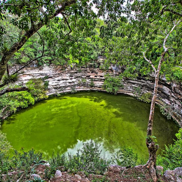 """Sacred Cenote"" stock image"