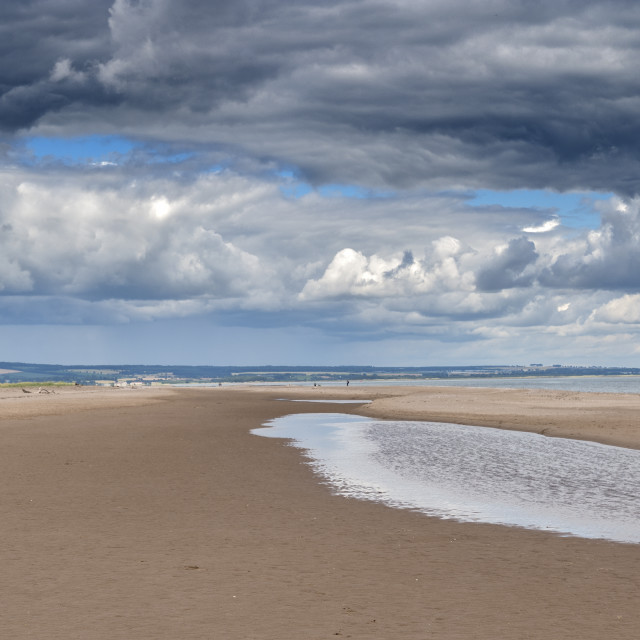 """Tentsmuir Beach in Scotland"" stock image"