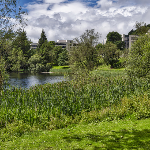 """Stirling University Park, Central Scotland"" stock image"