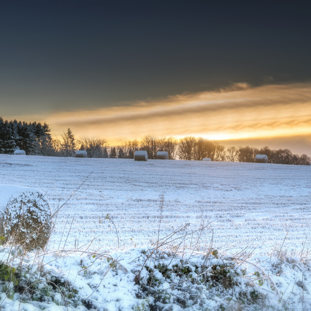 """Winter Sunrise in Central Scotland"" stock image"