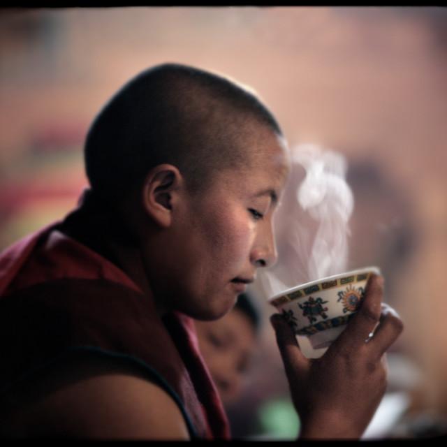 """Nun drinking tea, Getchok Gompa, Tibet"" stock image"