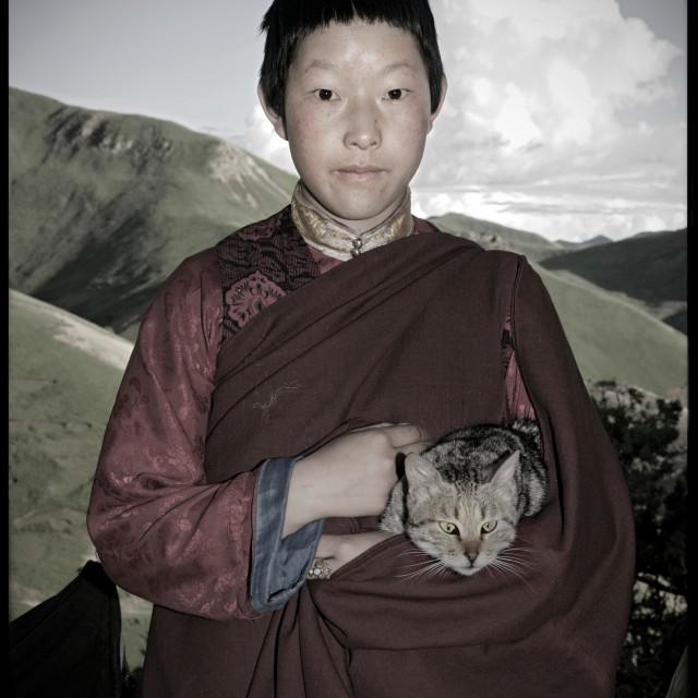 """""""Nun holding kitten, Dechen Ling, Nanchen Tibet"""" stock image"""