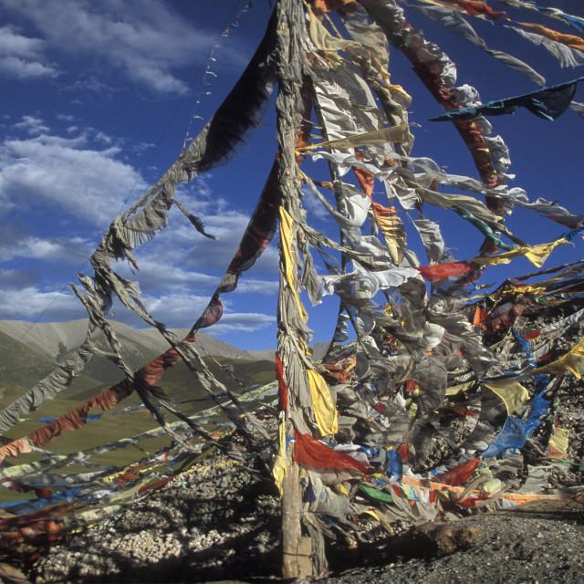 """Prayer Flags, Tibet"" stock image"