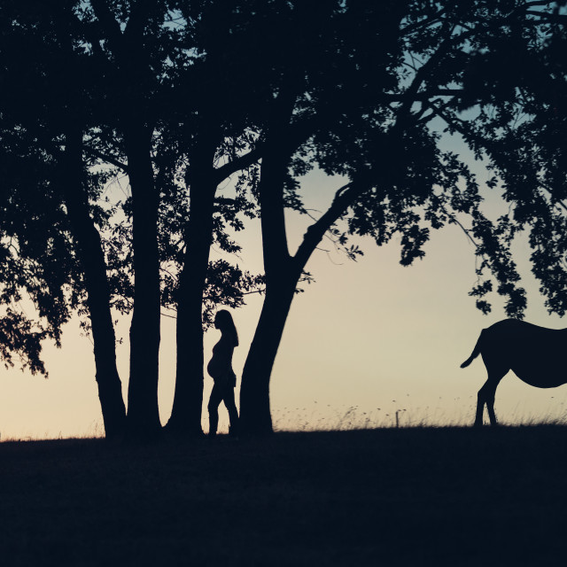 """""""Silhouette of a pregnant woman, little girl, horse and trees in"""" stock image"""