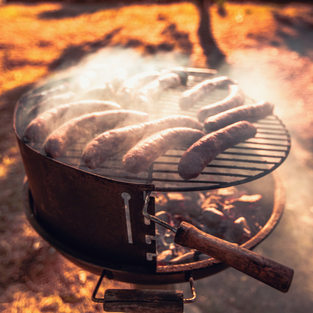 """Grilling sausages on barbecue grill. Picnic in teh forest"" stock image"