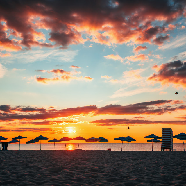 """Silhouette of Beach Umbrellas"" stock image"