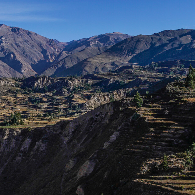 """Colca Canyon Panorama"" stock image"