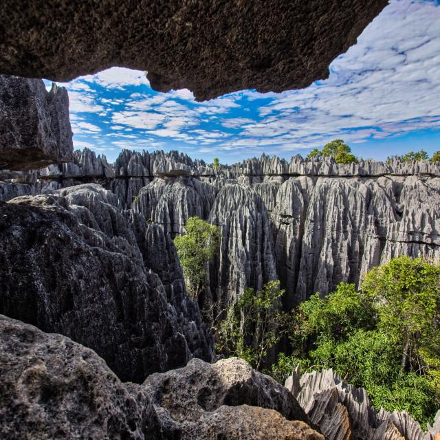 """""""Madagascar Limestone Spires"""" stock image"""
