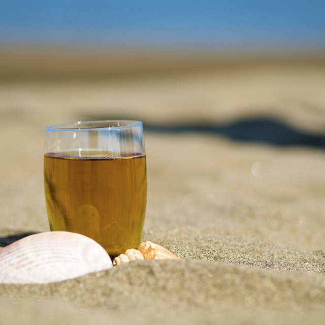 """glass of tea with shells"" stock image"