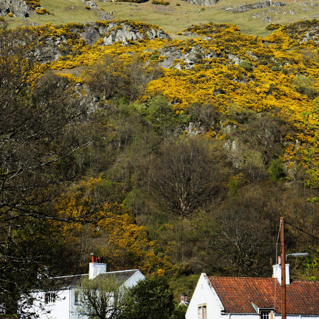 """""""Foothill Village in Scotland"""" stock image"""