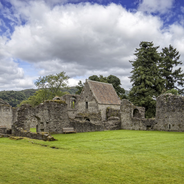 """""""Inchmahome Priory"""" stock image"""