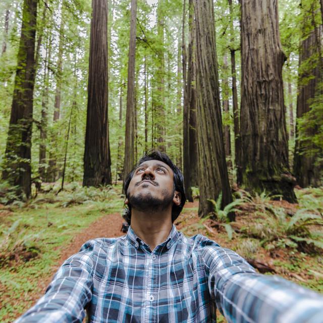 """Walking through forest wilderness"" stock image"