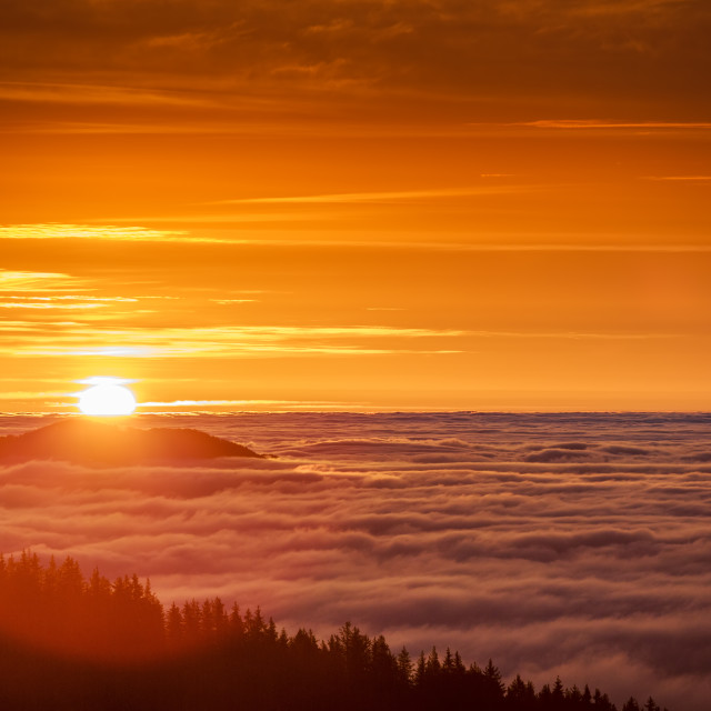 """""""Sunrise over clouds in the mountain. Aerial view over misty and"""" stock image"""