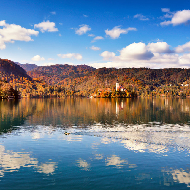 """Colorful autumn on Bled lake, Slovenia"" stock image"
