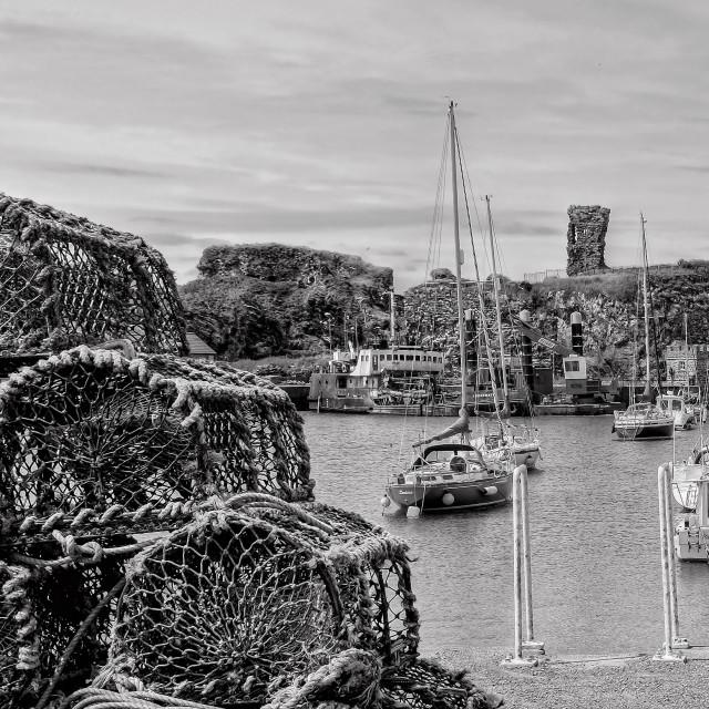 """""""Dunbar Harbour"""" stock image"""