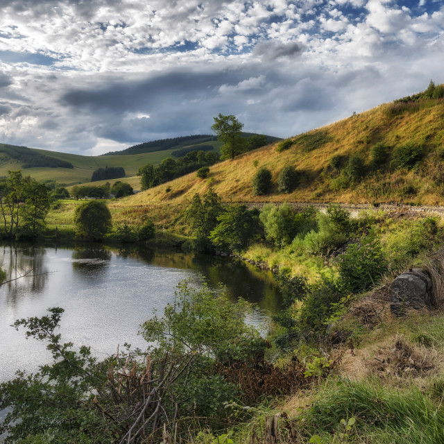 """""""Countryside in the Scottish Borders"""" stock image"""