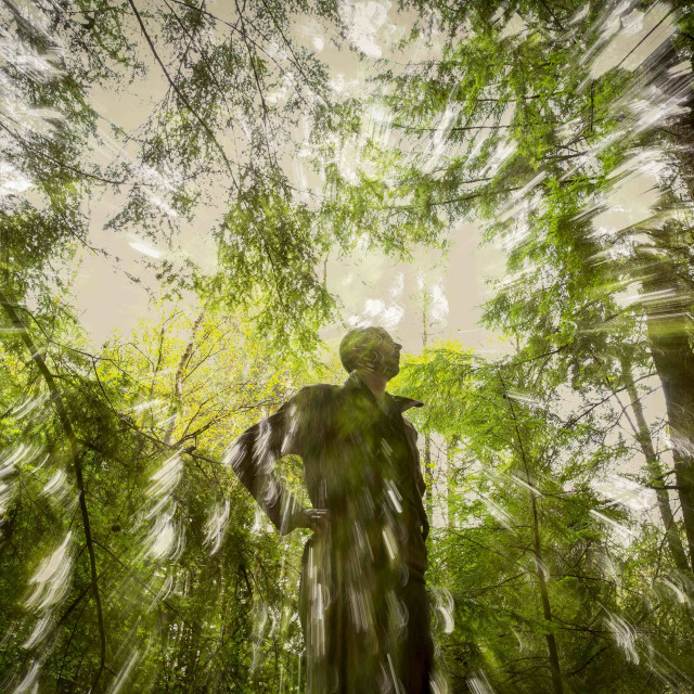 """Man In Forest"" stock image"