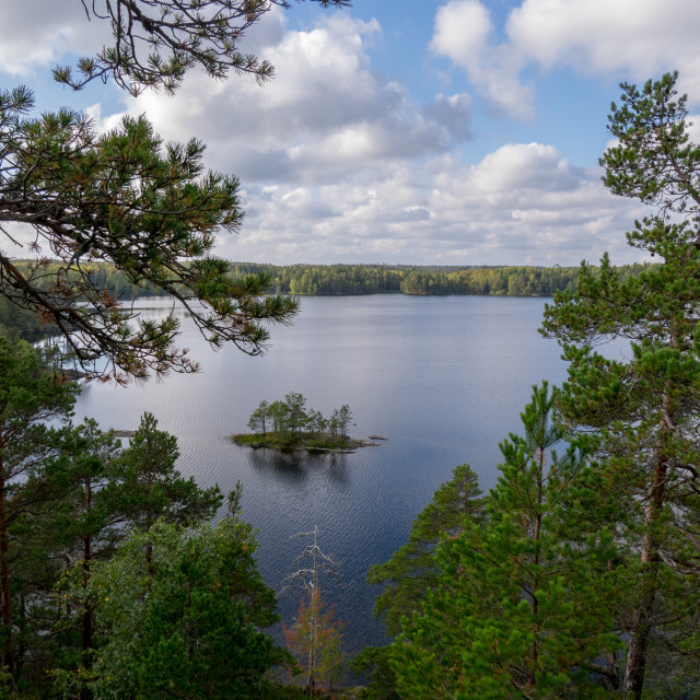 """A lake in the forest"" stock image"