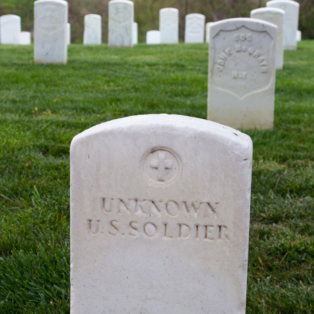 """Unknown soldier, Washington, DC."" stock image"