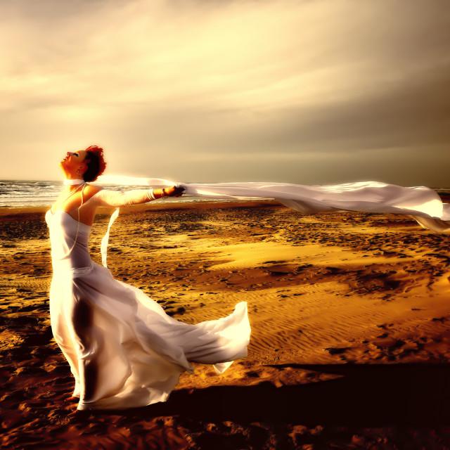 """White veil on the beach"" stock image"