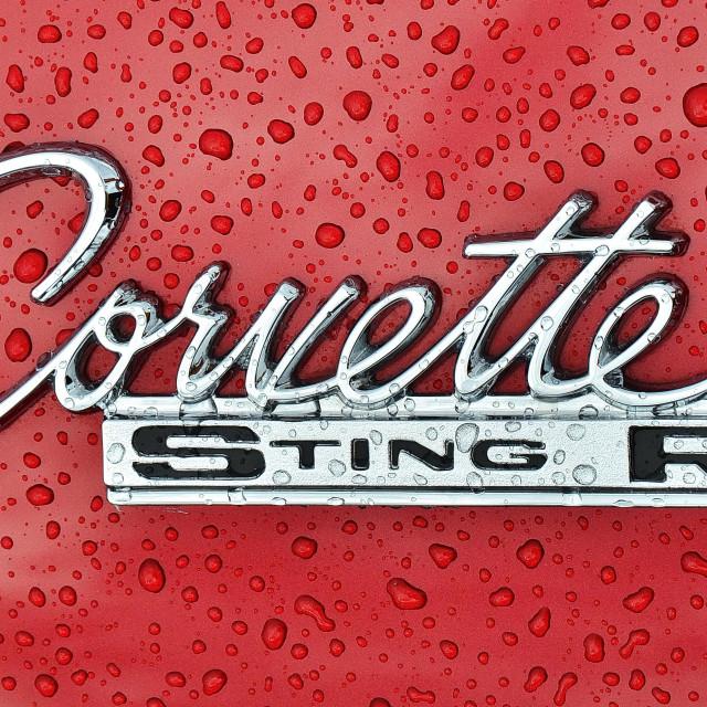 """Corvette Sting Ray Shines in the Rain"" stock image"