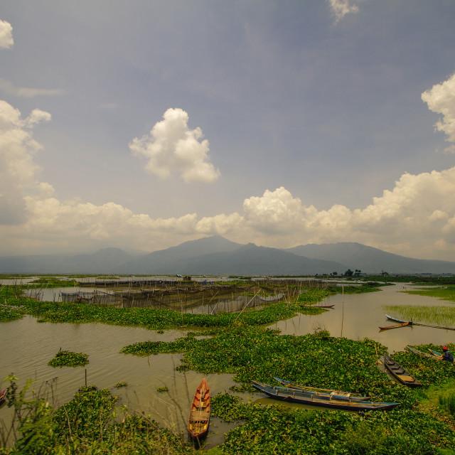 """""""Rawa Pening Lake"""" stock image"""