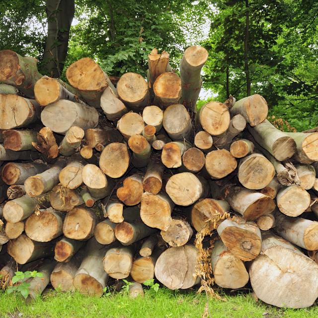 """Holzstapel"" stock image"