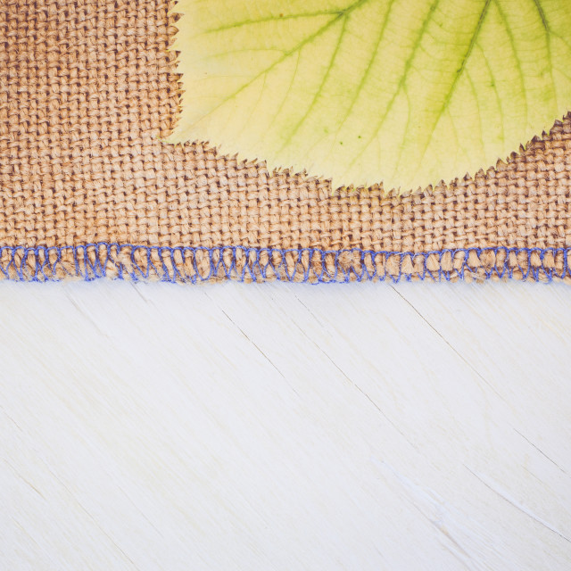 """""""yellow lime leaf on a burlap surface"""" stock image"""