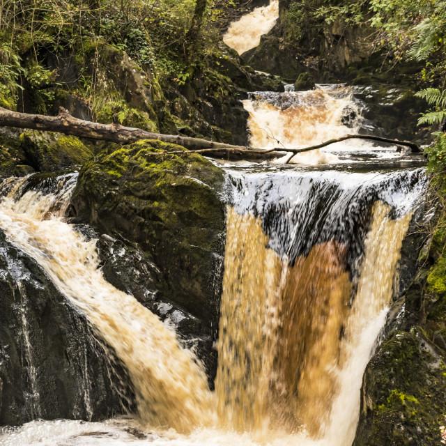 """UK - Yorkshire Dales - Ingleton Falls"" stock image"