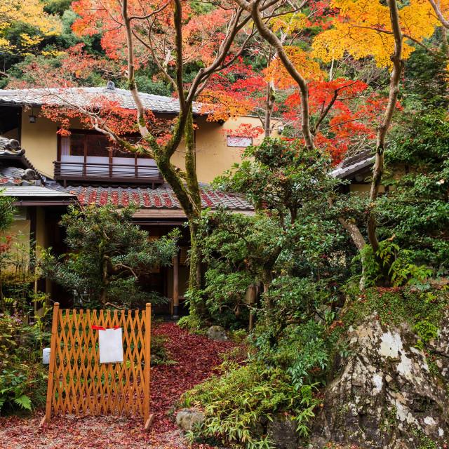 """Japanese House with autumn leaf"" stock image"