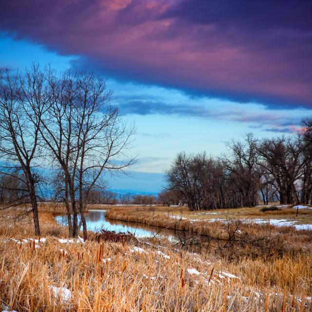 """""""Wetlands Sunrise"""" stock image"""