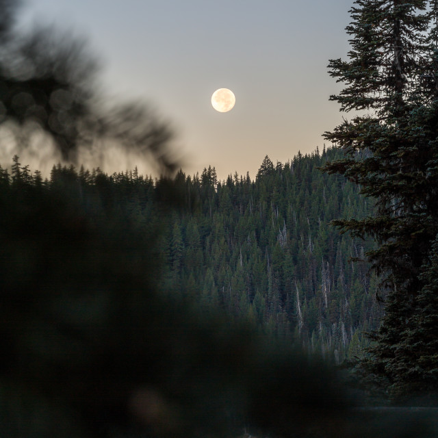 """Ful Moonset during Sunrise"" stock image"