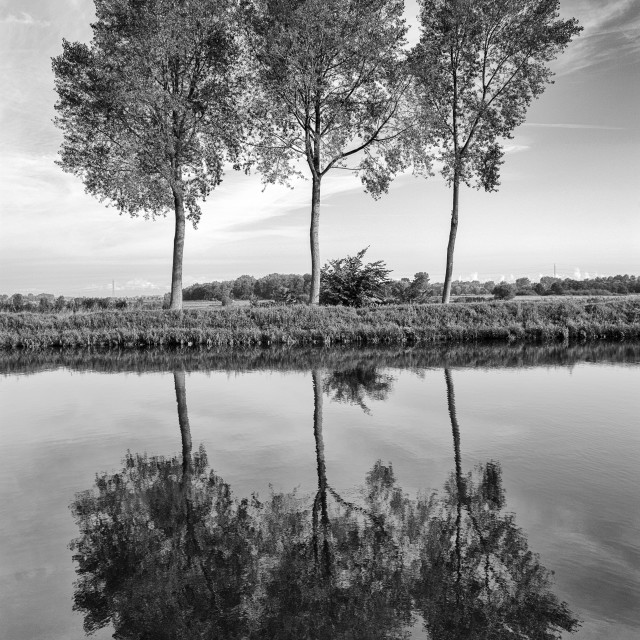 """""""nr Brugge Belgium Trees reflected in the waters of the Brugge to Oostende canal."""" stock image"""