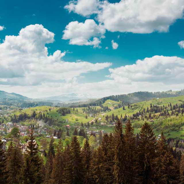"""Carpathian Mountains, Ukraine (Part 2)"" stock image"