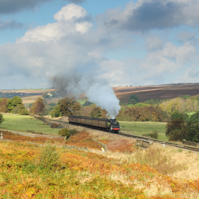 """Moorland Steam"" stock image"