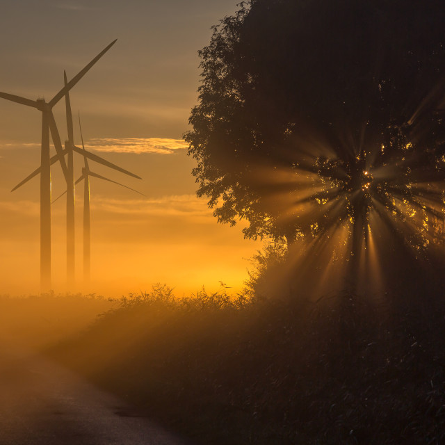 """Sunrise on a misty October morning"" stock image"