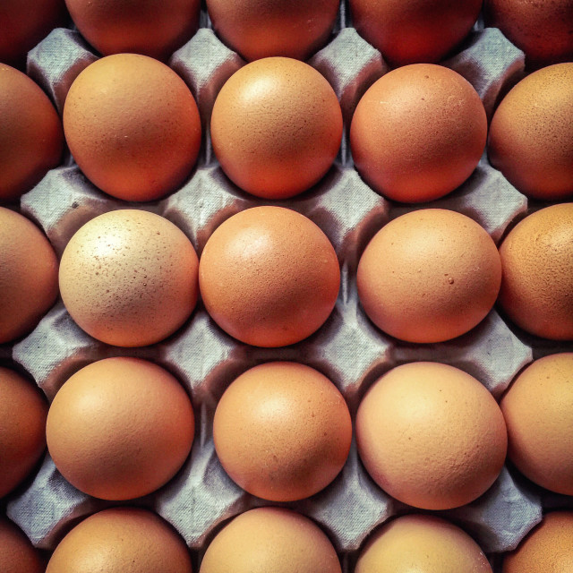 """Top view on a tray of eggs"" stock image"