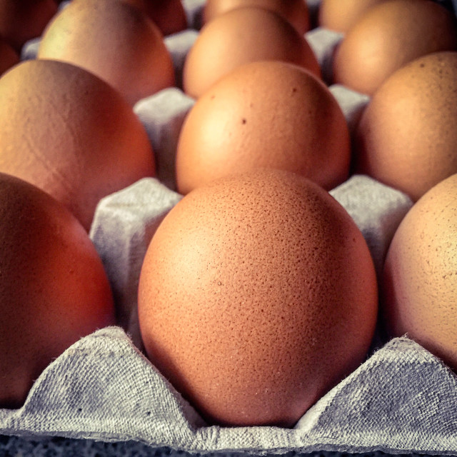 """Closeup view on a tray of eggs"" stock image"