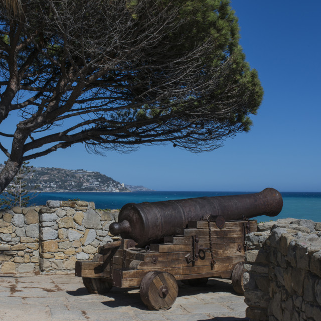 """""""Old cannon."""" stock image"""