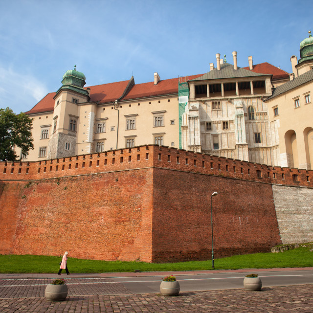 """""""Wawel Royal Castle in Krakow"""" stock image"""