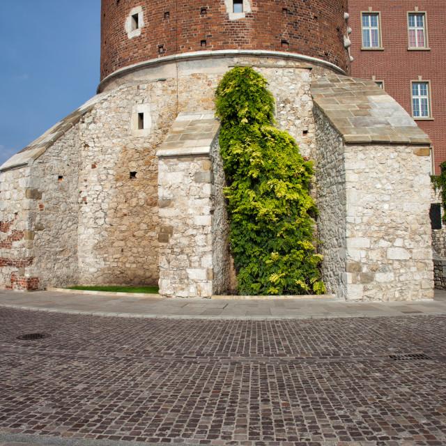 """""""Sandomierska Tower of Wawel Castle in Krakow"""" stock image"""