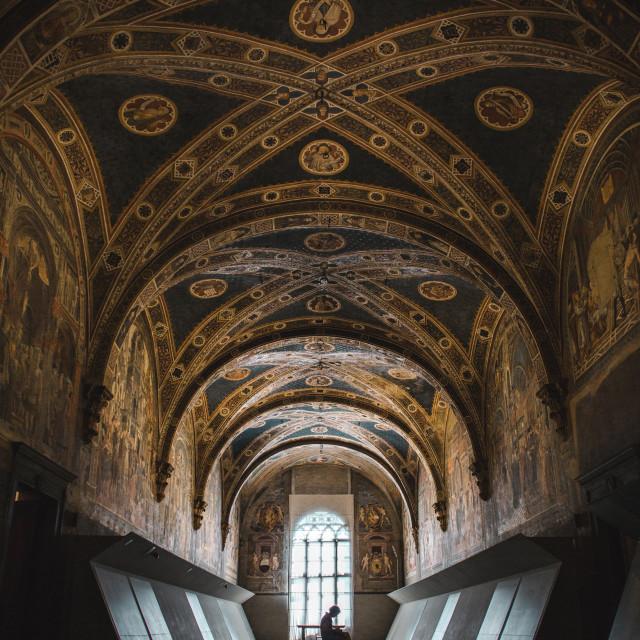 """Florence & Siena"" stock image"