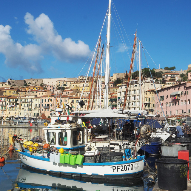 """Fishing boats in Portoferraio,Elba, Italy."" stock image"