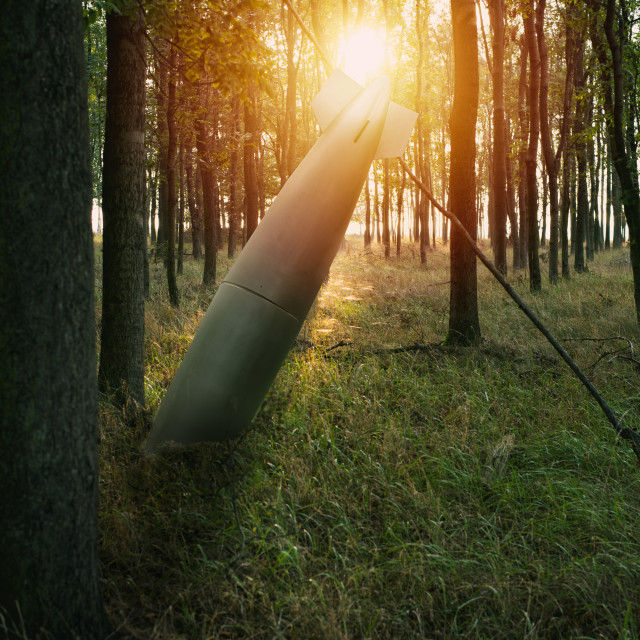 """close up on misfire or unexploded bomb in the forest"" stock image"